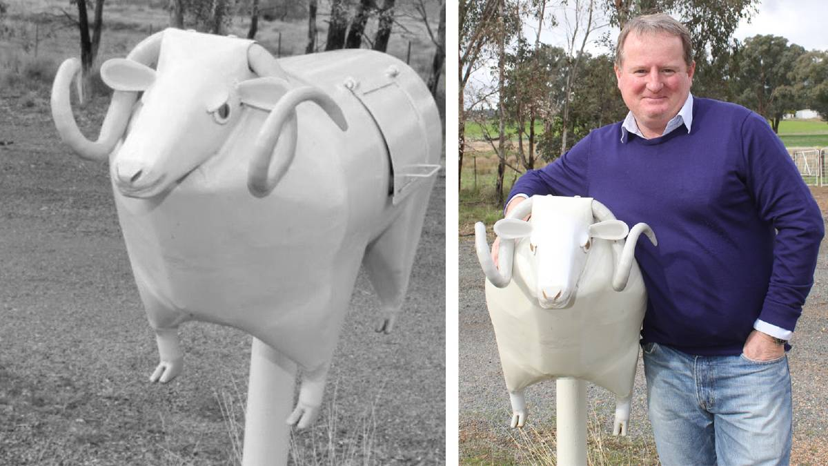 Paul Cocking with his Merino mailbox. Picture: Nikki Reynolds