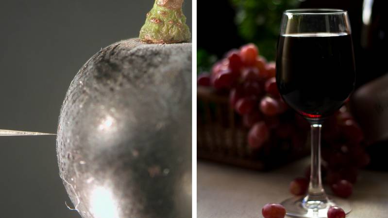 SOCIAL PROBLEM: (L) An oxygen sensor measuring the oxygen of a Shiraz berry - could shriveled wine grapes cause a shortage of Shiraz grapes? Picture: supplied