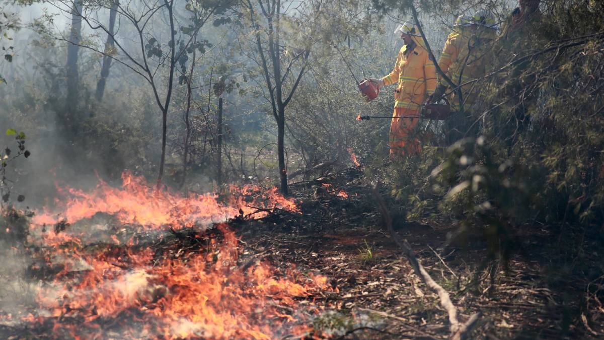 COOL BURN: NSW RFS and Fire and Rescue conduct a hazard reduction burn at Willans Hill on Sunday. Picture: Les Smith